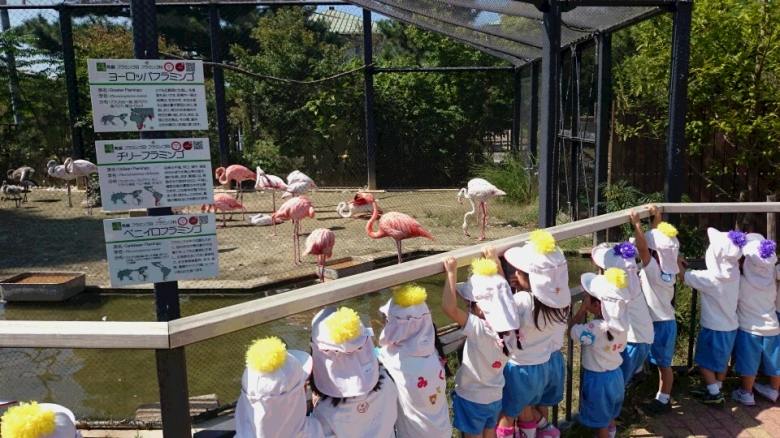 遠足in京都市動物園